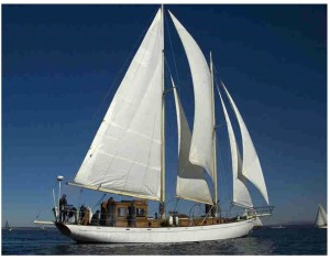 Schooner Suva with all sails flying